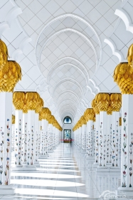 Sheikh Zayed Mosque 10