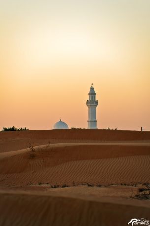 Desert and Minaret